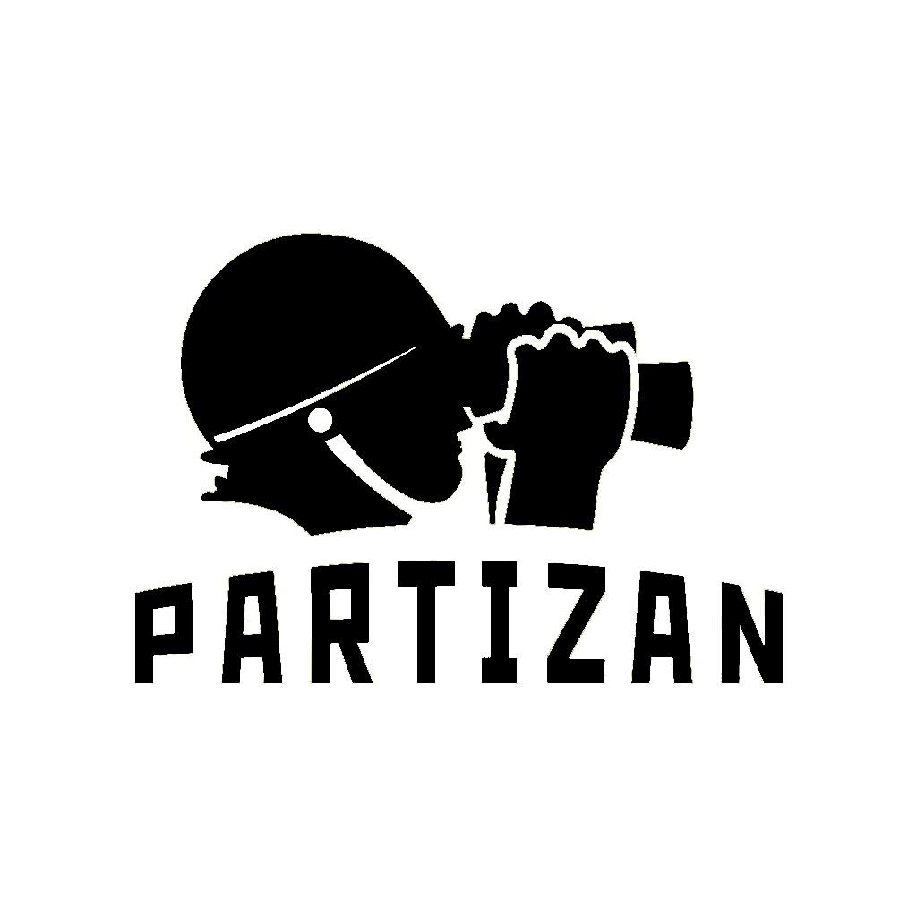 PARTIZAN ĮRAŠYMO ĮRENGINIAI NVR/DVR